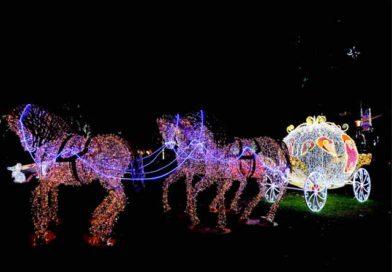 Dal 15/11 al 19/01 Salerno: Luci d'Artista